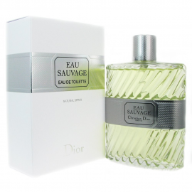 Christian Dior - Eau Sauvage for Men (Kvepalai vyrams) EDT 100ml (TESTER)