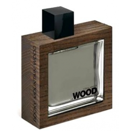 Dsquared² She Wood Rocky Mountain Wood for Men (Kvepalai Vyrams) EDT 100ml