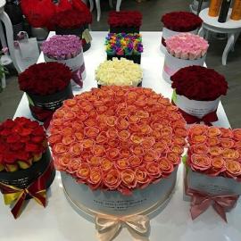 Gėlių dėžutė (TEST)