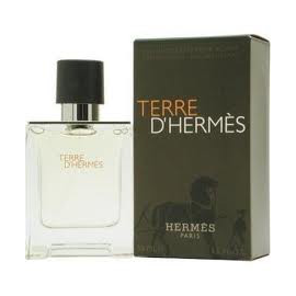 Hermes - Terre D Hermesfor Men (Vyrams)  EDT 100ml